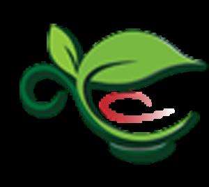 صادر کننده چای و دمنوش های گیاهی